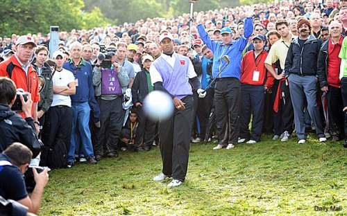 Tiger hits a golf ball